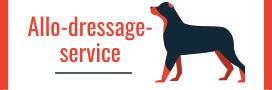 allo-dressage-service